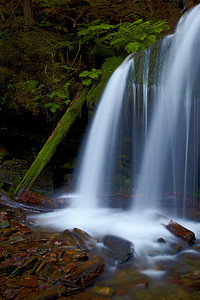 Fern Falls, in the Coeur d'Alene National Forest, Idaho, USA. The falls are on a tributary of Yellow Dog Creek.