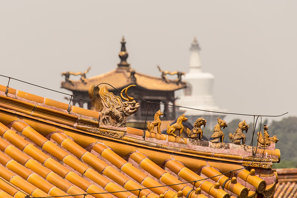 Forbdden Palace Roof, Beijing China