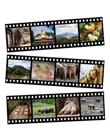 Sri Lanka collage