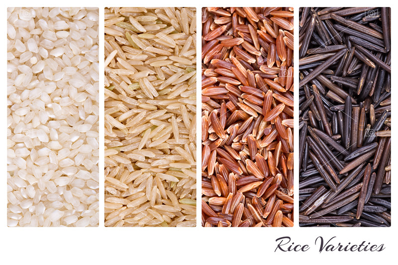 Rice varieties collage