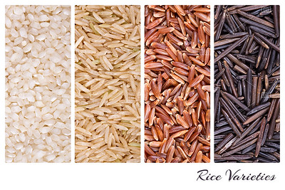 Rice varieties collage
