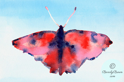 Fantasy butterfly - red and blue  - Beverly Brown Artist