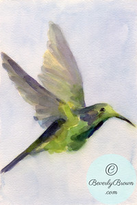 Hummingbird  - Beverly Brown Artist