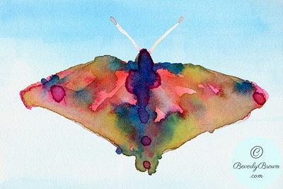 Fantasy Butterfly Yellow Pink + Blue - Beverly Brown Artist