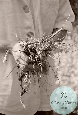 Woman holding weeds.