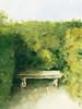 Bench Parc de Bagatelle Paris - Beverly Brown Artist