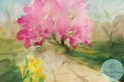 Blossoming Magnolia Tree in Central Park, NY - Watercolor Illustration  - Beverly Brown Artist