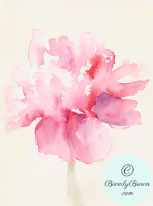 Pink peony  - Beverly Brown Artist