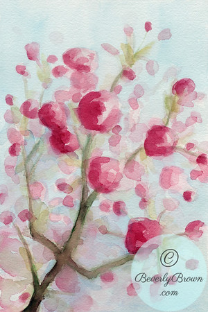 Cherry Blossoms Branch  - Beverly Brown Artist