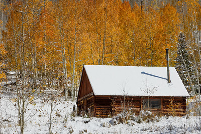 """Fall Becomes Winter at Jackson Station"""