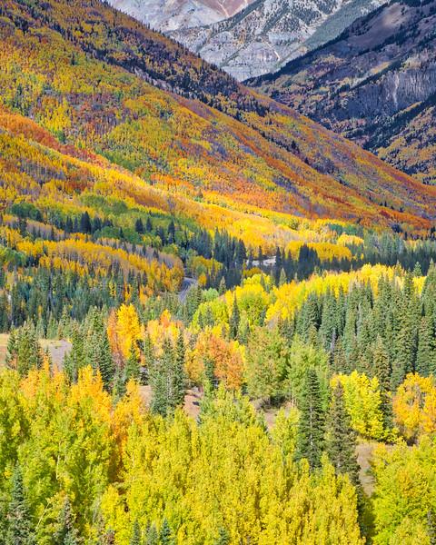 """Spectacular Fall"""