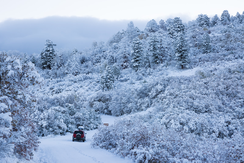 I made fresh tracks in the snow with my footprints and Jeep. Taken on Owl Creek Pass, Uncompahgre National Forest, Colorado, USA.