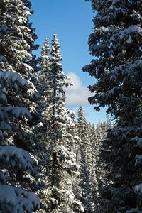 """""""Happy Winter Solstice!"""""""