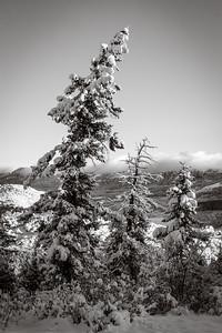 """Winter Comes Early in Colorado"""