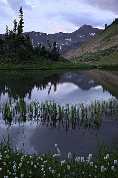 Reflections in a small pond on the Paradise Divide, near Crested Butte, Gunnison National Forest, Colorado, USA. The mountain in the background is Purple Mountain, which is 12,958 feet in altitude.