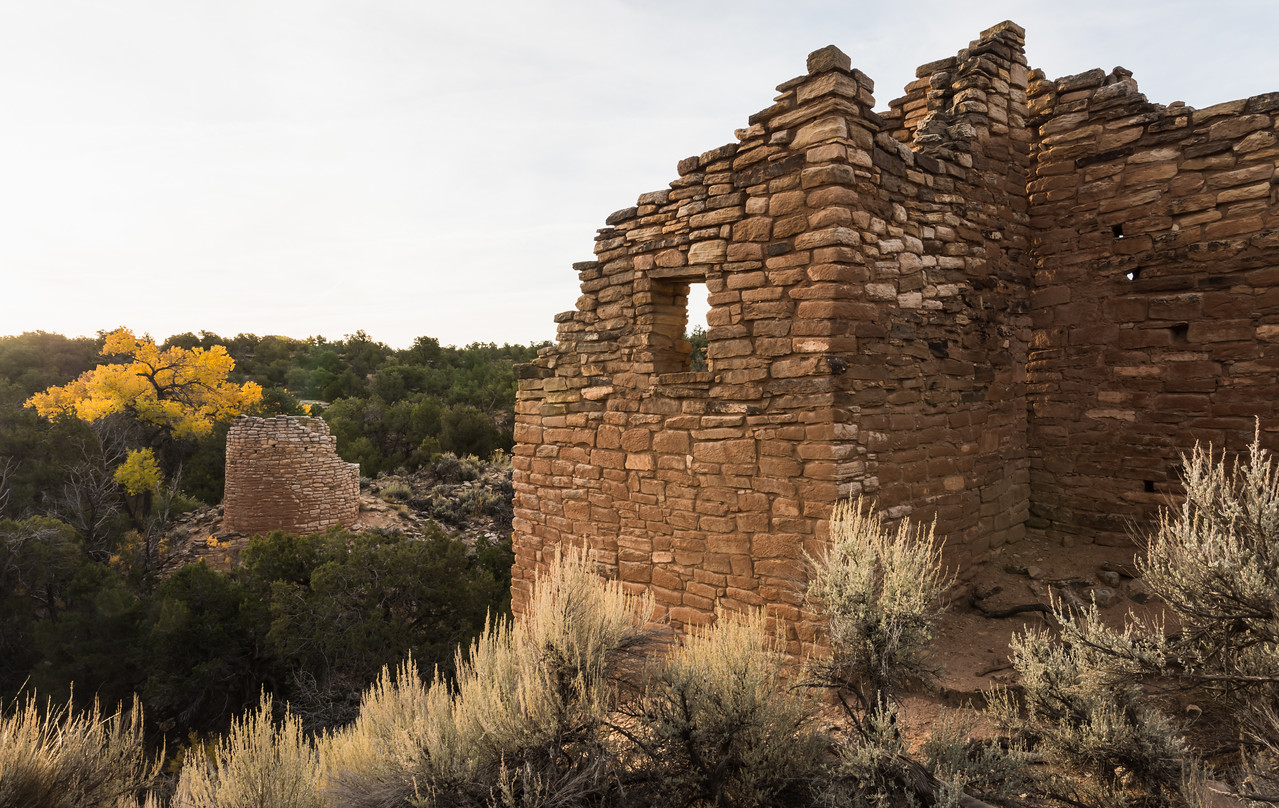 """Fall at Cutthroat Castle Ruins"""