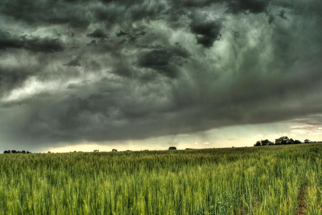 Colorado Storm