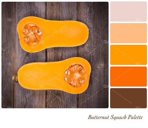 Butternut Squash Palette