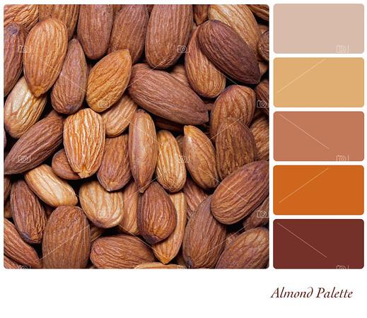 Almond palette