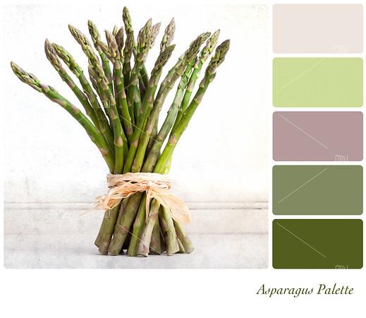 Asparagus palette