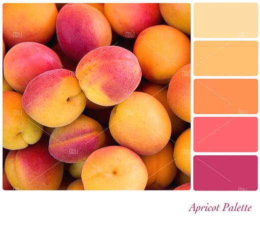 Apricot palette