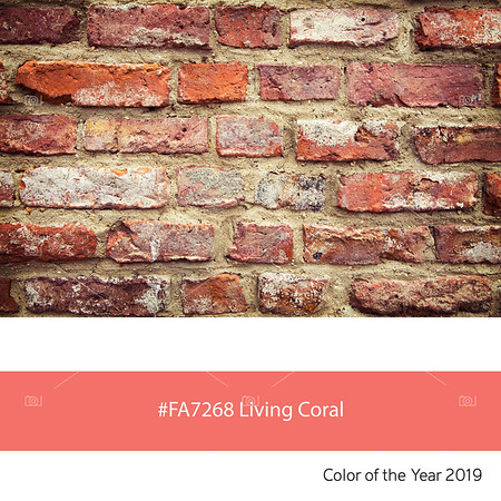 Living Coral, Color of the Year - Brick wall
