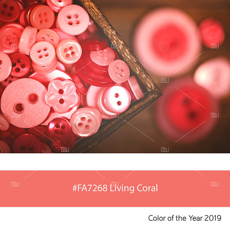 Living Coral  Color of the Year, Old Buttons