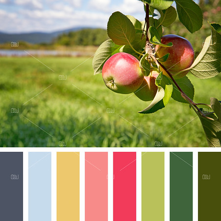 Apple orchard palette