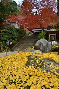 薫紅葉の寺