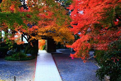 錦秋の山門