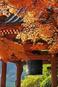 鐘楼も秋の装