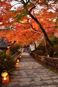 山道の秋景