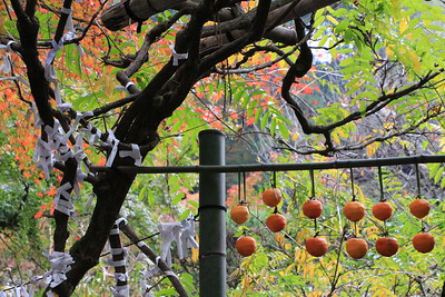 みのりの秋を迎えて