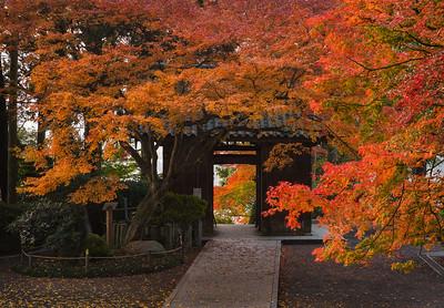 晩秋の山門