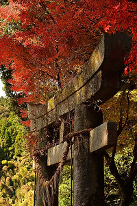 秋への入口