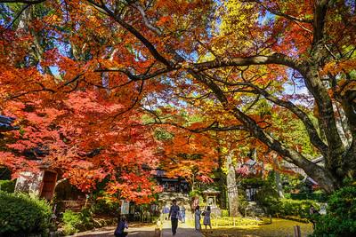 秋の慶び大興善寺