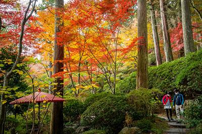 錦秋の庭園