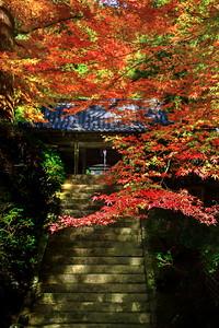 石段の紅葉