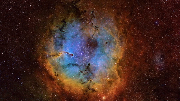 IC 1396 - The Elephant Trunk Nebula - Wide View Color Narrow Band Image