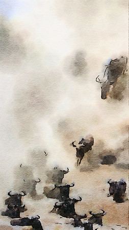 Wildebeest watercolour