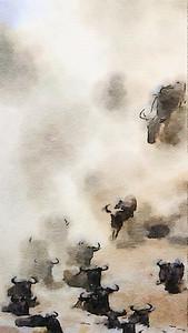 Wildebeest watercolour