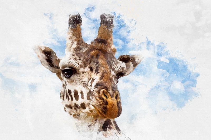 Giraffe portrait mixed media
