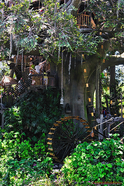 Swiss Family Robinson Treehouse - The Magic Kingdom