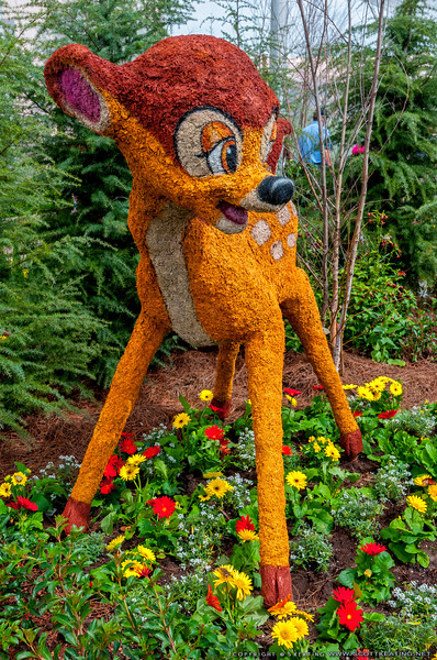 Bambi <br /> Bambi's Butterfly House - Flower & Garden Festival 2012 - Epcot