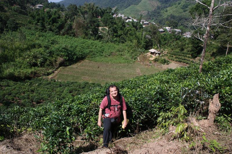 riding the hill, through the tea plantation