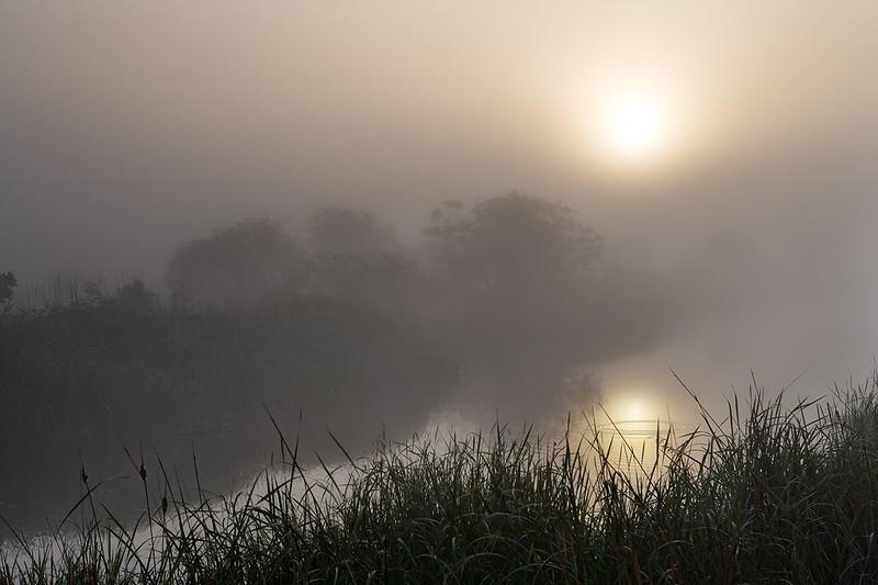 Circles and Fog