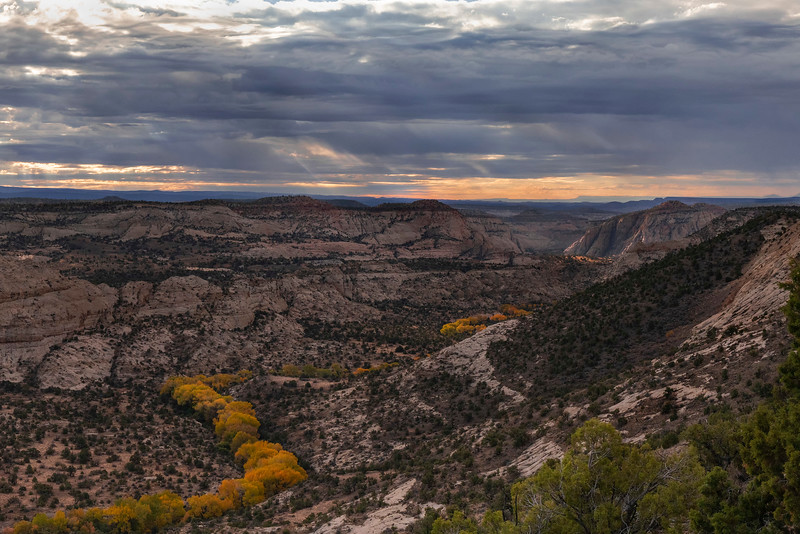 Looking East, towards the Escalante River Canyon from the Hogs Back