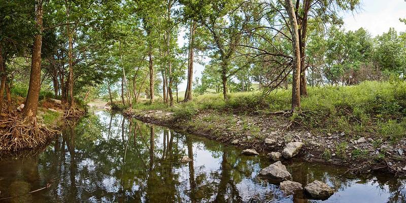 Shadow Valley Creek, June