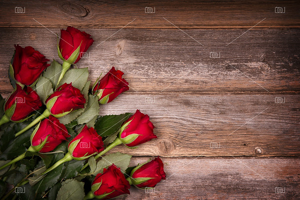 Red roses on old wood