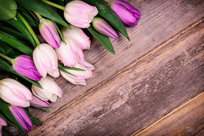 Tulips over old wood